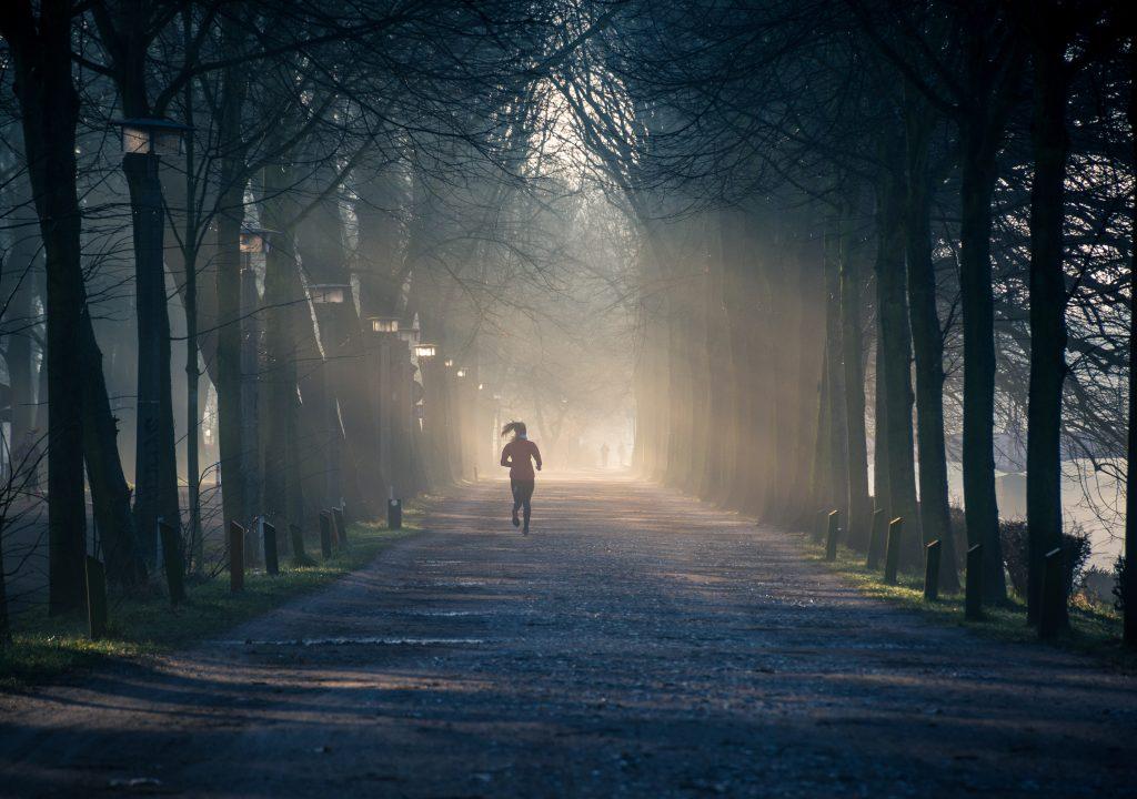 fit für den Corona Herbst, Laufen im Wald
