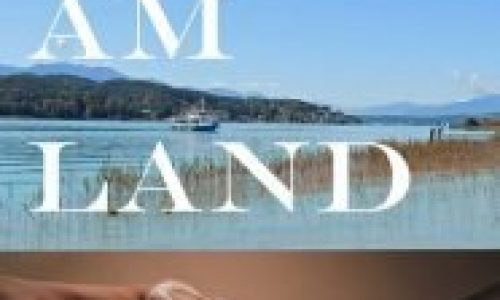 Festam-Land_cover30_klein24022020bs-186x300