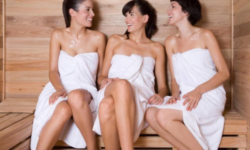 Privater Sauna abend in Wien1
